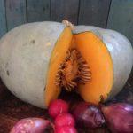 pumpkin and chorizo soup recipe