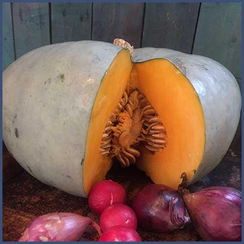 Hearty autumn soup – pumpkin and chorizo