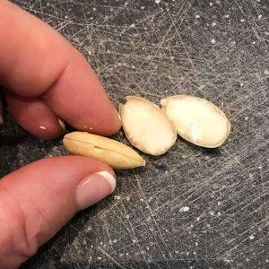 spilt almonds