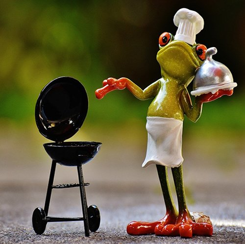 Beginners guide to know about barbecues 2021