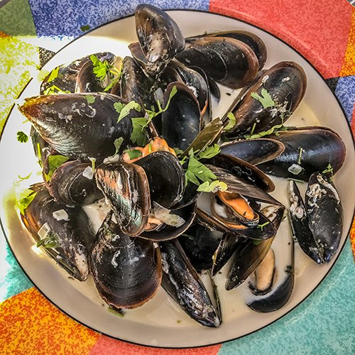 how to cook mussels - 10 things you should know